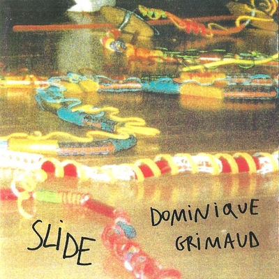 Dominique Grimaud Slide 1999